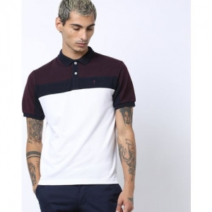 INDIAN TERRAIN Colourblock Polo T-shirt with Vented Hemline