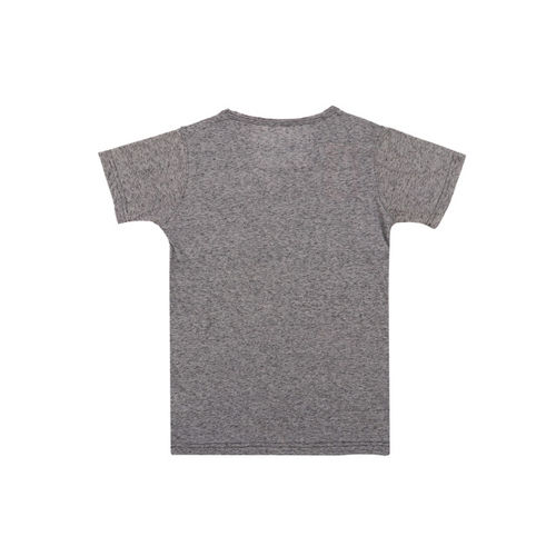 Lil Tomatoes Boys Grey Printed Round Neck T-shirt