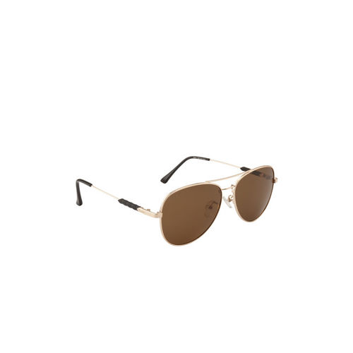 Ted Smith Unisex Aviator Polarised and UV Protected Sunglasses TS-NC-1233S