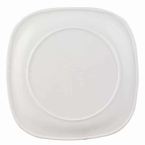 Golden Fish Square Plastic Dinner Plates, 6 Piece, White