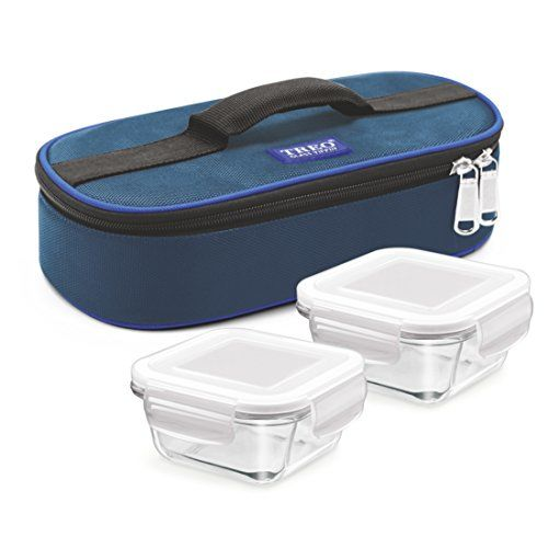 Treo By Milton Health First Square Glass Tiffin Box with Cover, 300 ml, Set of 2, Transparent