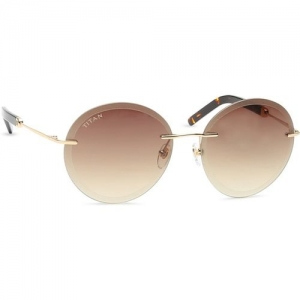 Titan Oval Sunglasses(Brown)