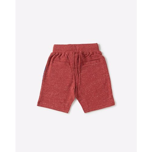 U.S. Polo Assn. Knitted Shorts with Contrast Side Panel