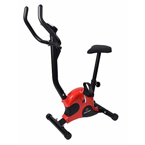 Endless Imported Exercise Bike for Fitness (Red/Black)