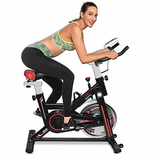 Dolphy Exercise Spin Bike for Home Gym and Indoor Cycling