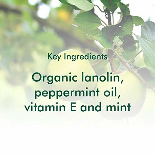 Organic Harvest Lip Balm For dry & Chapped Lips, Parabens & Sulphate Free - 10gm (Pack of 2) (Green Apple)