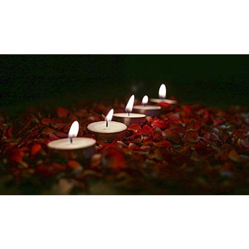 Ein Sof White Unscented Tea Light Candles (Pack of 50)