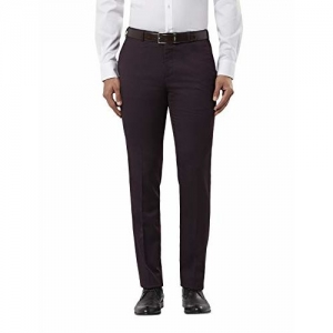 Raymond Men's Flat Front Slim FIT Pants (RMTZ03162-V7_82) Purple