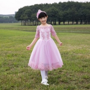 Yuanlu Adorable Pink Embroidered Flared Party Dress