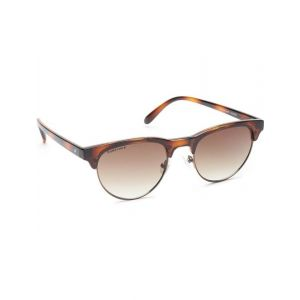Fastrack Clubmaster Sunglasses(Brown)