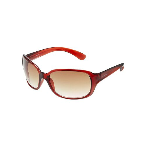 fastrack over-sized women brown sunglass - p101br2