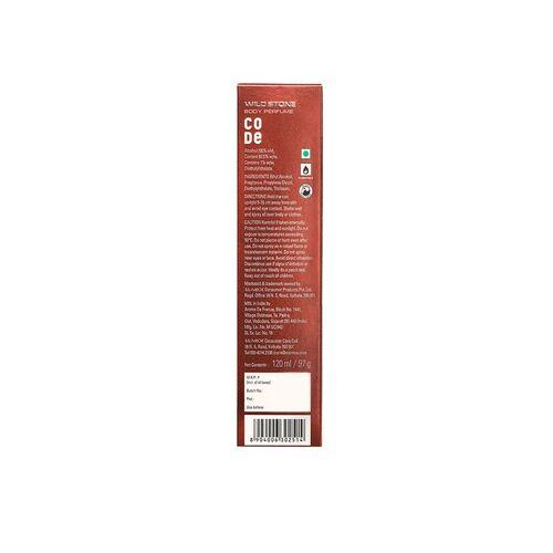 Wild Stone Men Code Copper & Iridium Body Perfume Spray Combo 240 ml