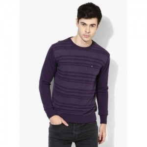 Blackberrys Purple Striped Regular Fit Round Neck Sweater