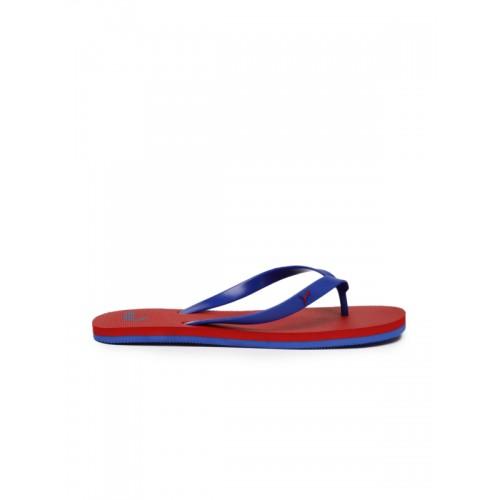 Puma Unisex Blue & Red Odius DP Flip-Flops
