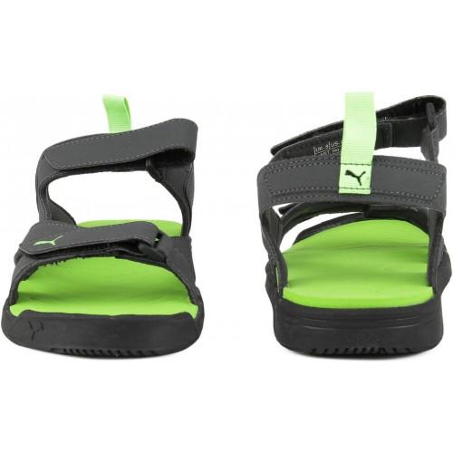 Buy Puma Men Asphalt-Puma Black-Green