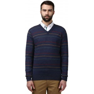 Raymond Casual Men Sweater