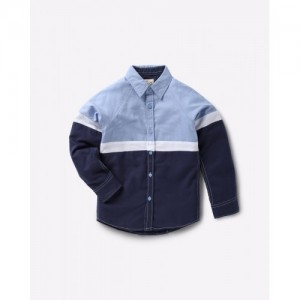 AJIO Blue Colourblock Shirt with Raglan Sleeves