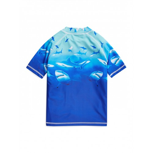 next Boys Blue Printed Round Neck T-shirt