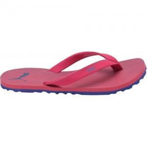 2cfec001d Buy Mixstar Slippers online