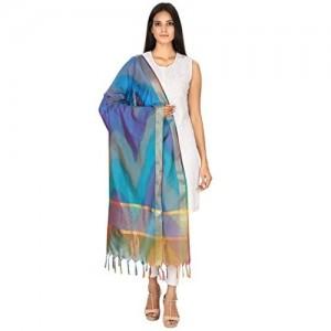 Dupatta Devam Multi Color Silk Cotton Handloom Dupatta