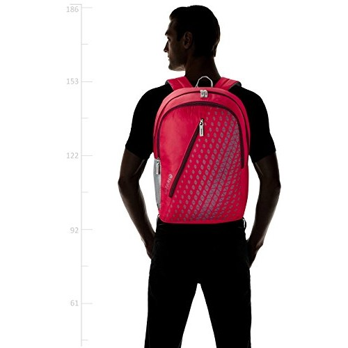 Safari 25 Ltrs Red Casual Backpack (Seesaw-Red-CB)