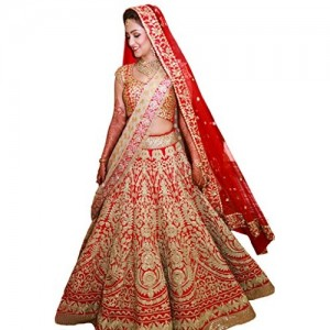 Fabron Women's Raw Silk Lehenga Choli (S308_Red_Free Size)