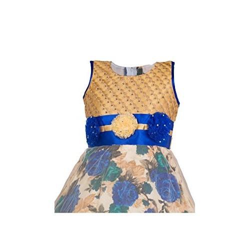 My Lil Princess Girls' Net Dress