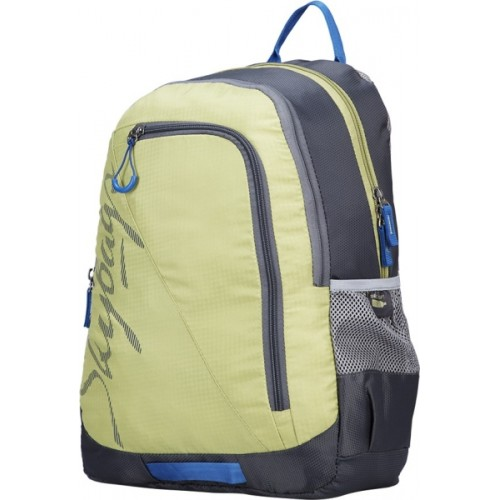 1a6739ab209 Buy Skybags Groove Plus 1 25 L Laptop Backpack online