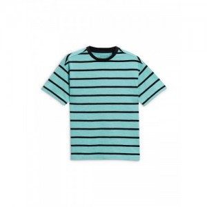 next Boys Sea Green Striped Round Neck T-shirt