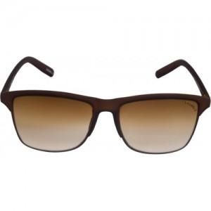 Laurels Brown Clubmaster Sunglasses